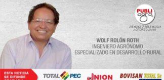 columna wolf rolon